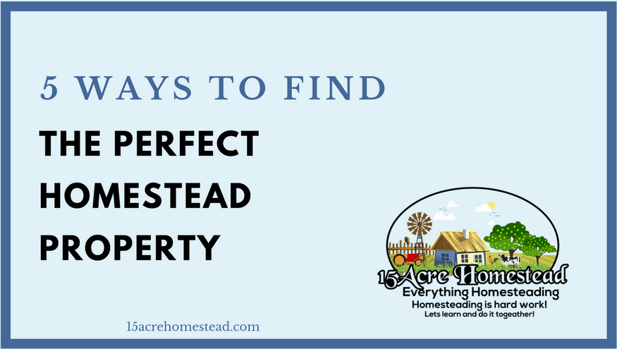 5 Ways to find the Perfect Homestead Property