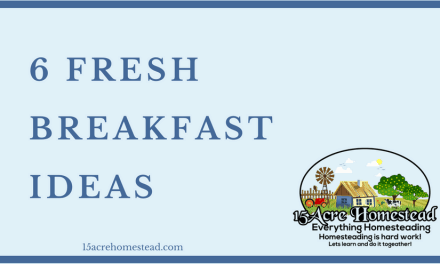 6 Fresh Breakfast Ideas to Whet your Appetite