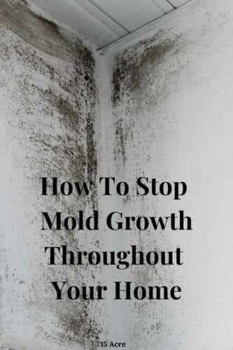 Learn easy and permanent ways to stop mold growth in your home with these tips.