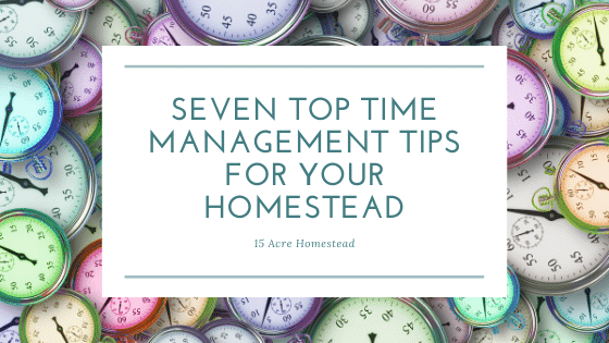 Top Time Management Tips