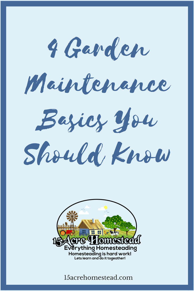 Some garden maintenance basics you should know about to help your homestead have some curb appeal.