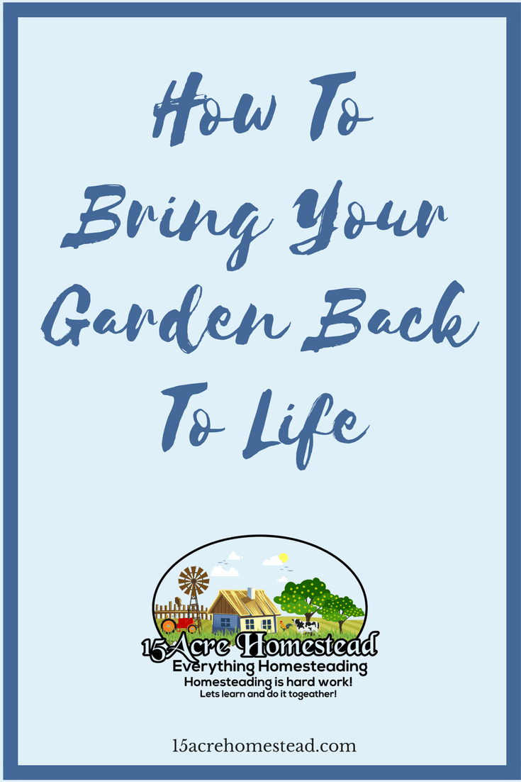 How To Bring Your Garden Back To Life 15 Acre Homestead