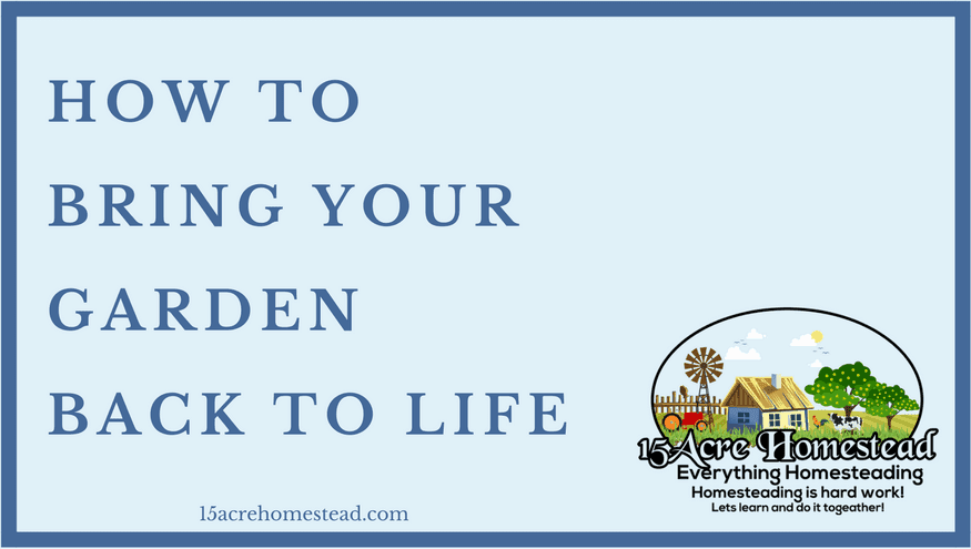 bring your garden back to life