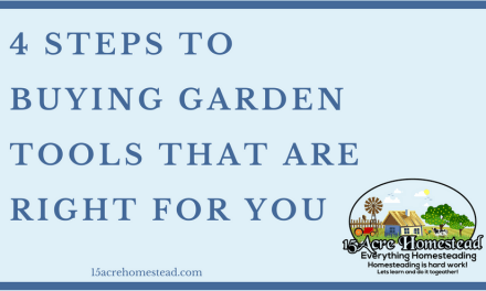 4 Steps To Buying Garden Tools That Are Right For You