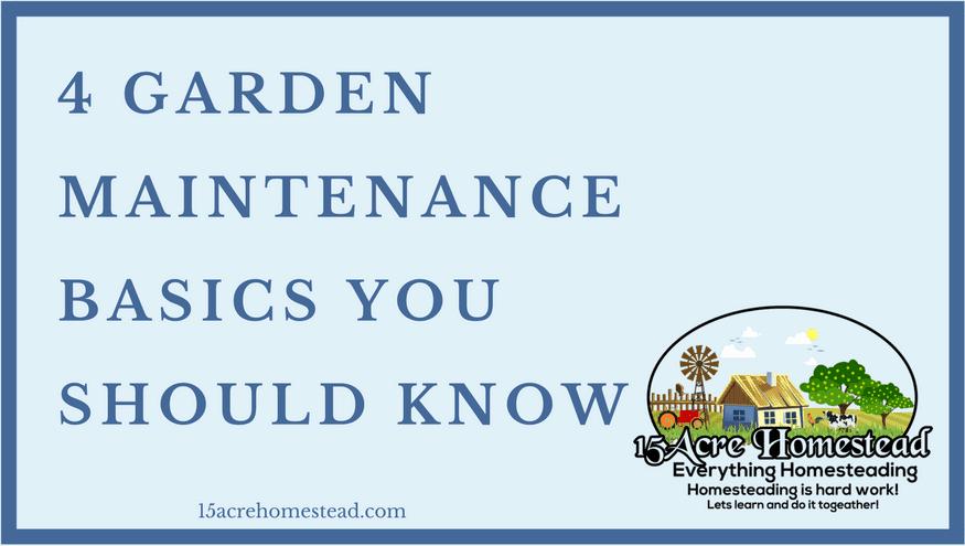 garden maintenance basics