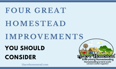 Four Great Homestead Improvements That You Should Consider