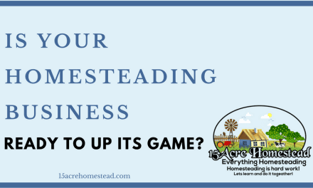 Is Your Homesteading Business Ready To Up Its Game?