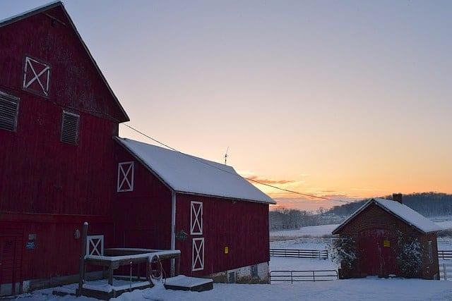 new homesteader-build a barn