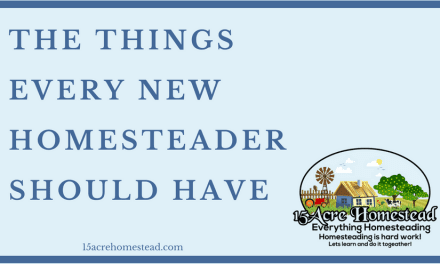 The Things Every New Homesteader Should Have