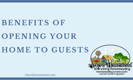 Benefits of Opening Your Home To Guests