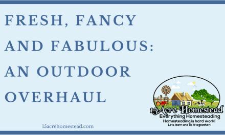 Fresh, Fancy and Fabulous: The Outdoor Overhaul