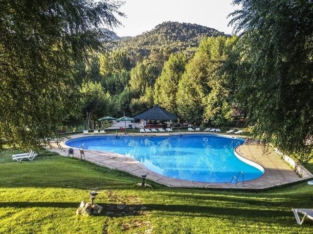 garden maintenance basics pool