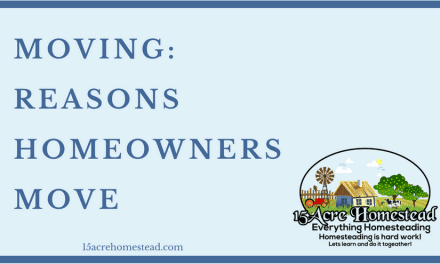Moving: Reasons Homeowners Move
