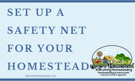 Set Up a Safety Net for Your Homestead