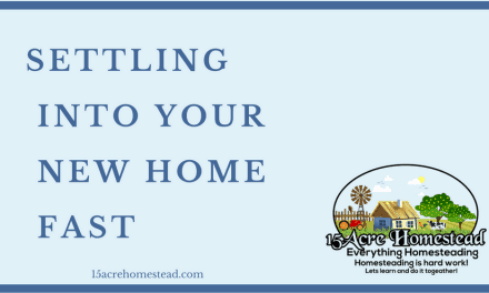 Settling Into Your New Home Fast
