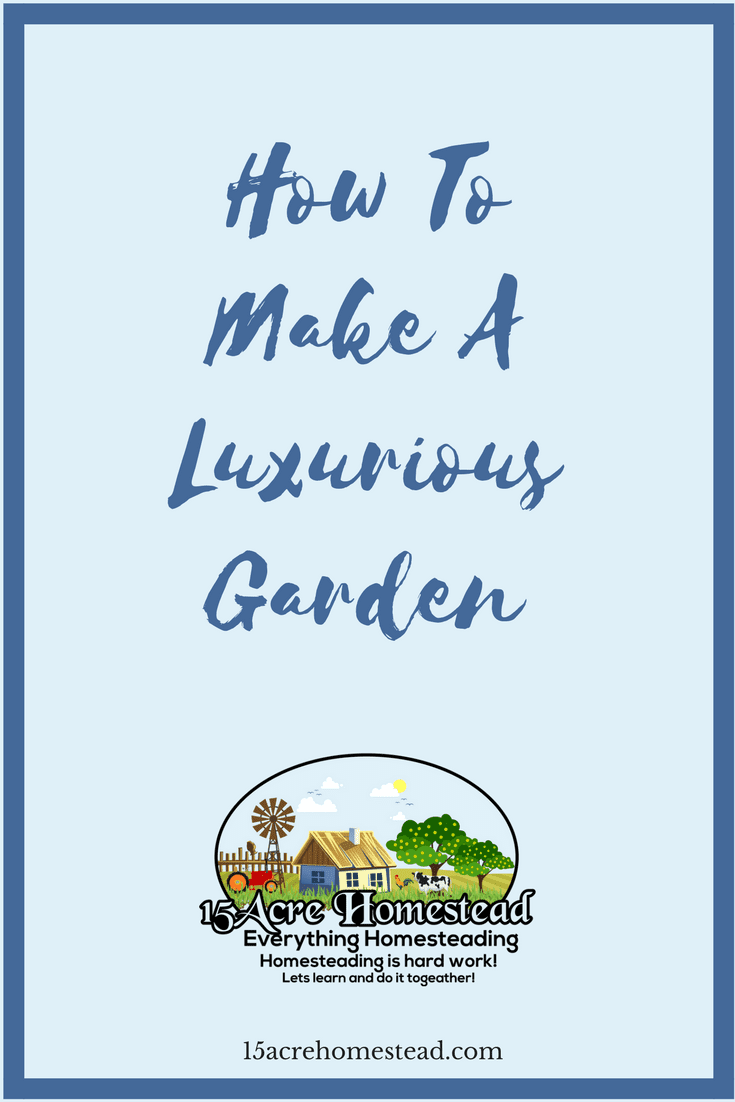 Even on the homestead you can have a luxurious garden by following these steps.