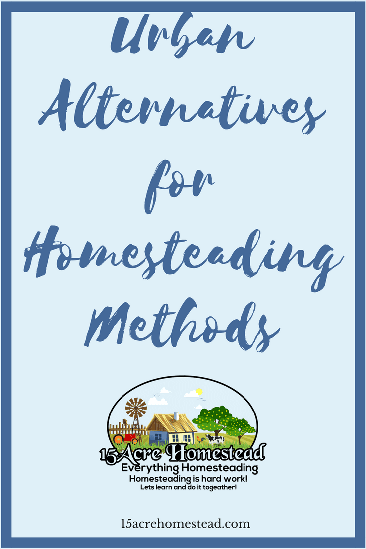 Just because you have to move back to the city doesn't mean you can't homestead. There are many urban alternatives available if you are creative.