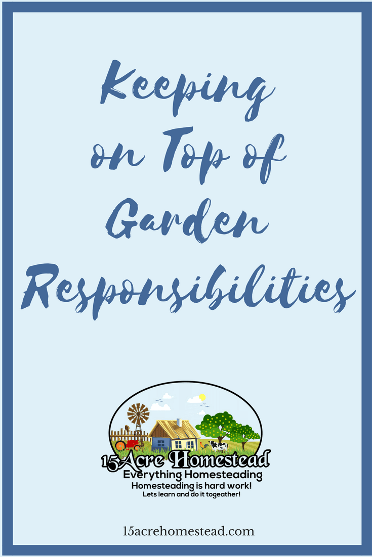 The land and its possibilities are the best things about homesteads. Consider the following options for keeping on top of the added gardening responsibilities.