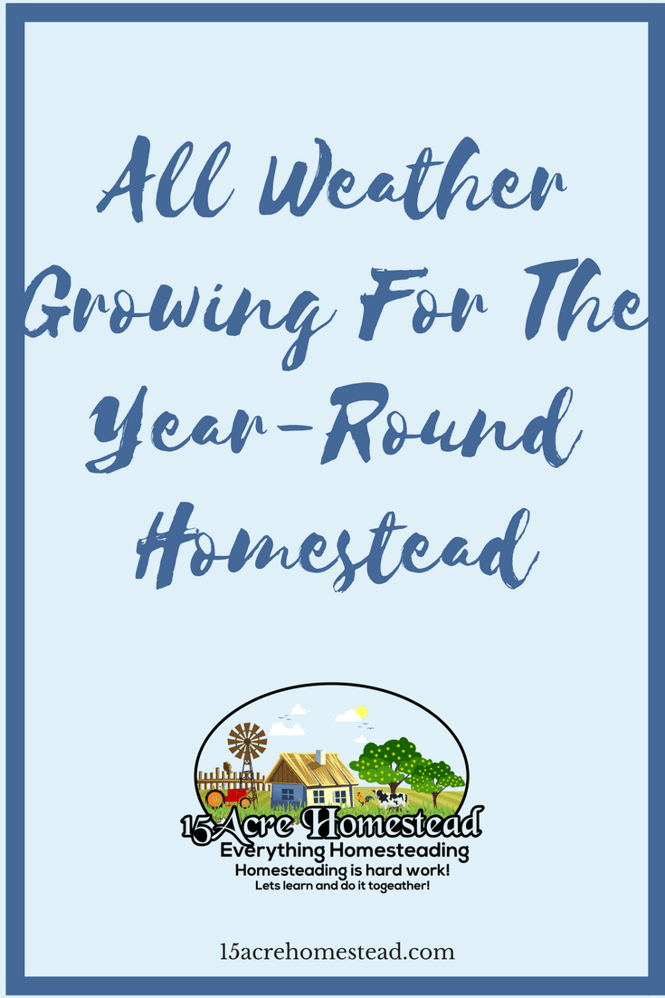 You can have a year-round homestead and provide food for your family even through the winter.