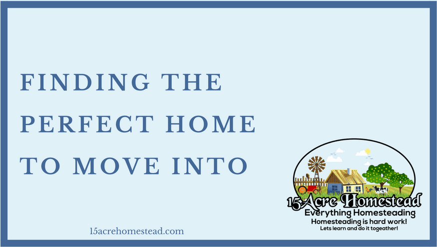 Finding the perfect home to move into 15 acre homestead for Find the perfect home