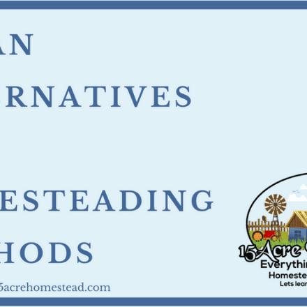 Urban Alternatives For Homesteading Methods