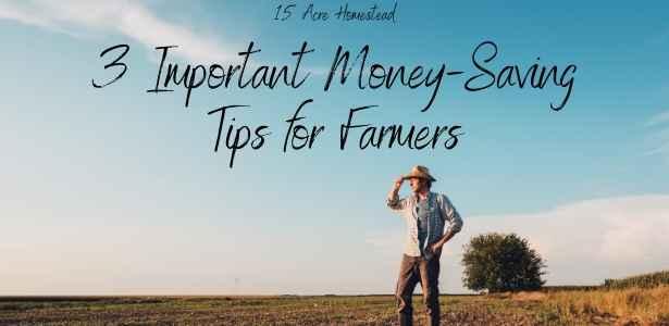 Money-saving tips featured image
