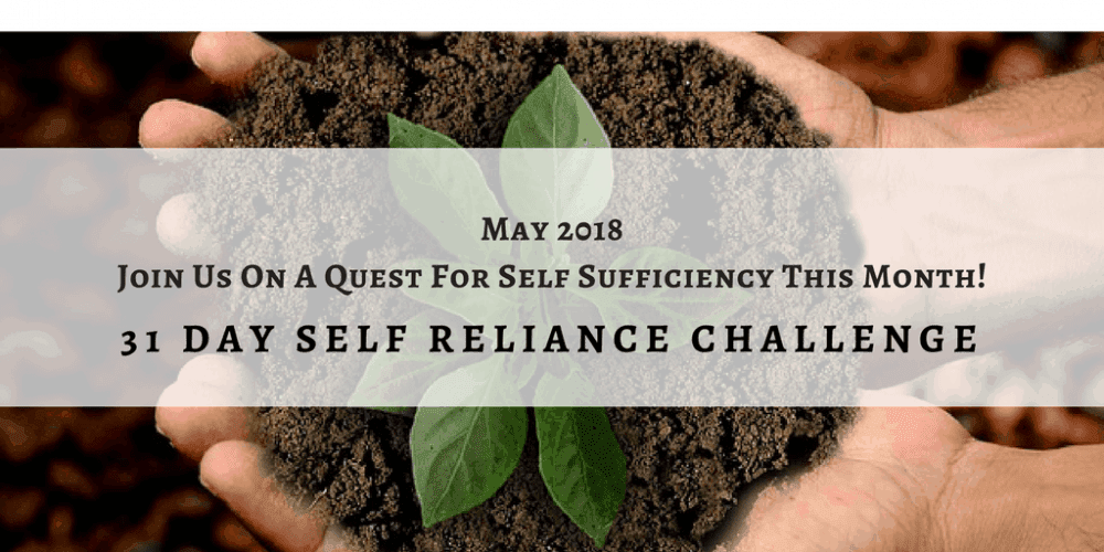 Self-reliance challenge: goals and plans