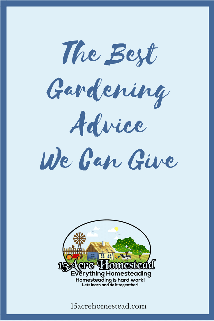 Having a garden means hard work and dedication. Here is some gardening advice to help you on the way.