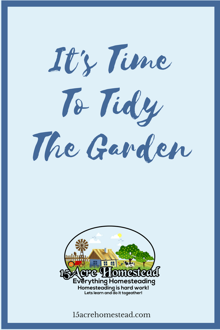 It is that time of the year when we start to tidy the garden again. Here are some quick tips to get you started.