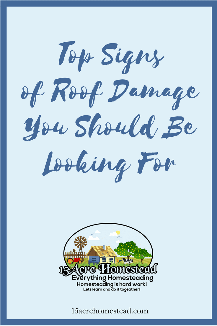 Pay attention to these top five sign of roof damage to your homestead so you can save a huge expense and tons of stress in the future.