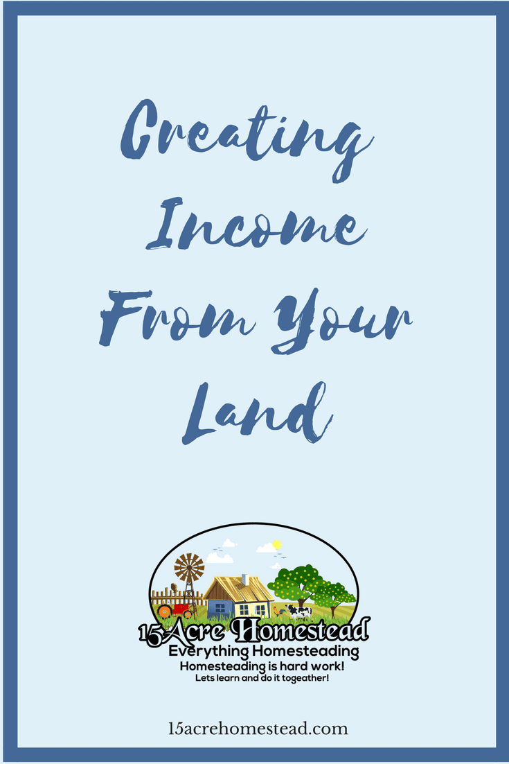 There are so many ways of creating income from the land you are living on. Many ideas are already in place.