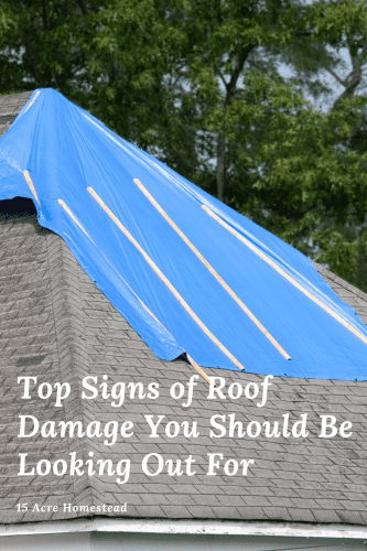 Roof damage can be expensive, especially if you let it go to long. Use these tips to catch and repair it sooner.