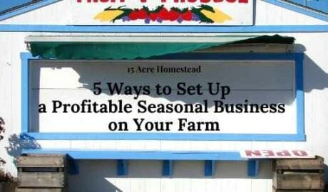 Have you considered a seasonal business on your homestead? Consider the tips mentioned here to start making an additional income from your homestead.