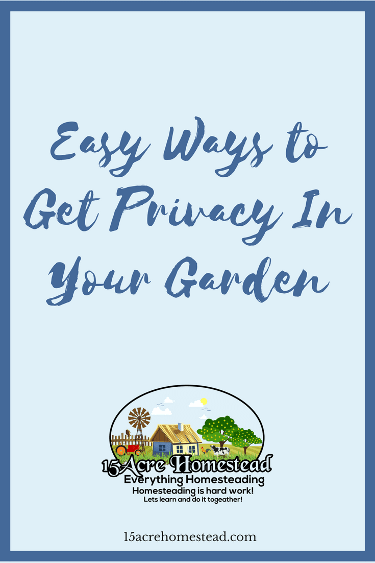 Attaining privacy in your garden can be done in many ways. See the tips and suggestions here for some good ideas.