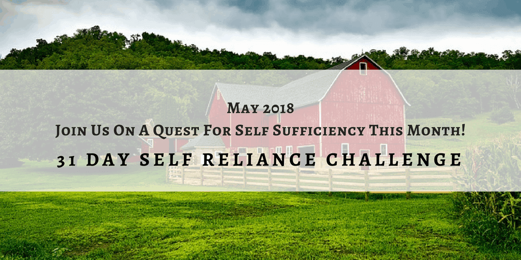 Self-Reliance Challenge: Week 1 Garden Achievements