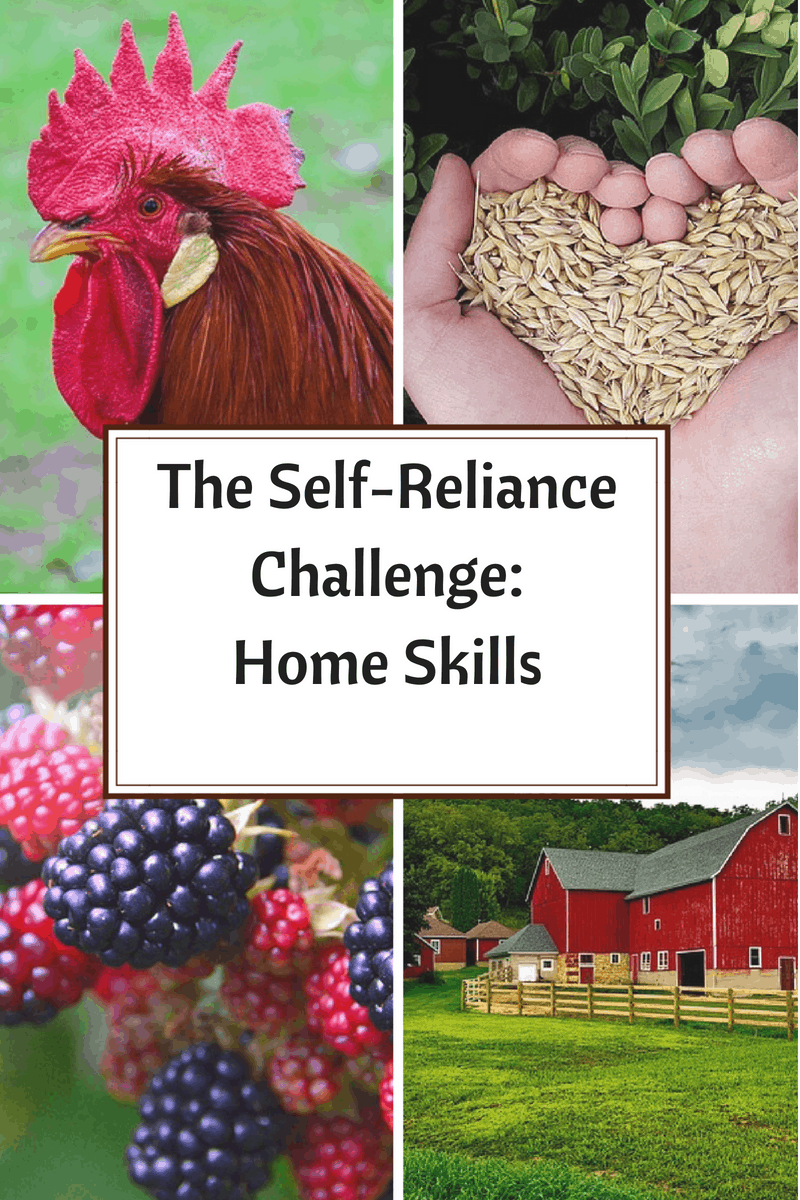 Come see how we did during week 3 of the Self-Reliance Challenge and check out our achievements.