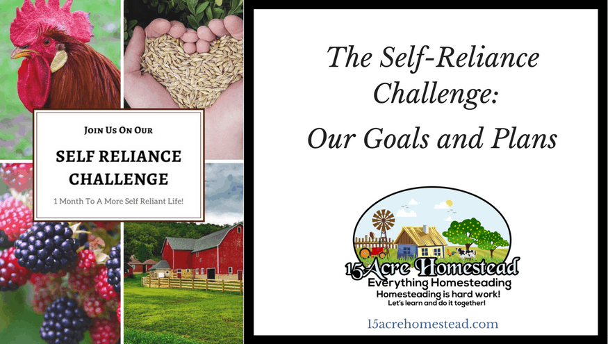 The Self-Reliance Challenge: Goals and Plans