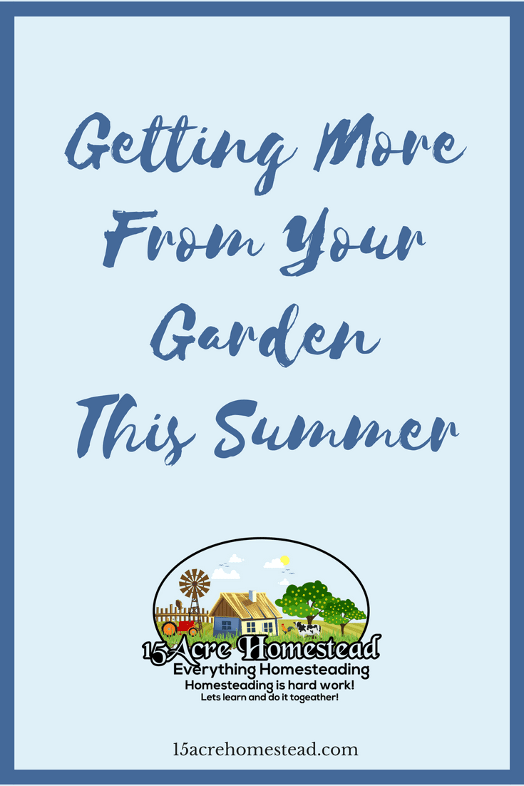 There are so many ways to get more from your garden this summer.