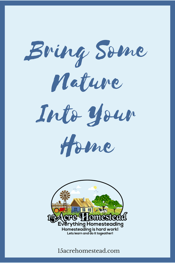 Use these tips and tricks to bring some nature into your home.