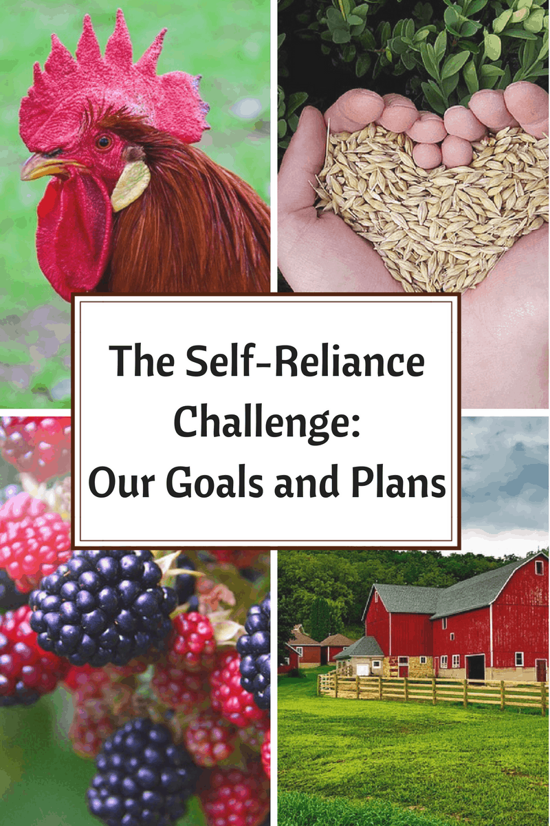 We joined the Self-Reliance Challenge! Come see what our goals and plans are for the month of May!