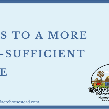 Steps To a More Self-Sufficient Home