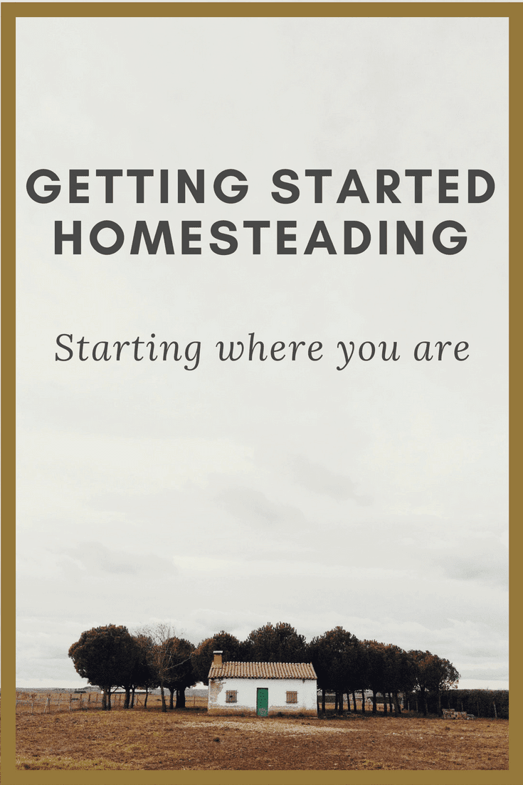 Are you just starting your homesteading journey_ Find out how to get started no matter where you are right now!