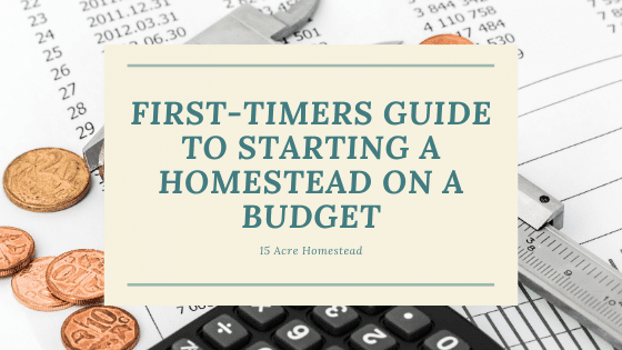 First-Timers Guide To Starting a Homestead on a Budget
