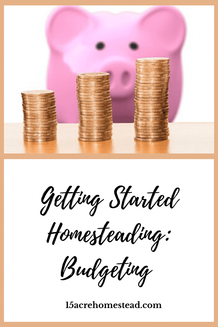 Homesteading is all about saving money and budgeting. It's about reusing things over and over. It's about being frugal. It is also about having to come up with money when you don't have it on hand. That's where learning about budgeting comes in handy.