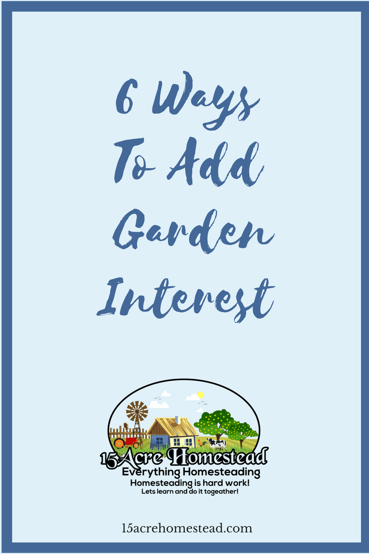 Here are 6 ways to add more garden interest to your garden on your homestead.