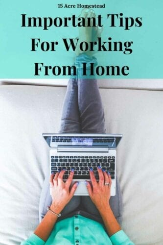 Before you start working from home, make sure to take these tips in mind.