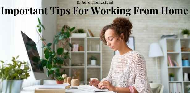 feature image for working from home