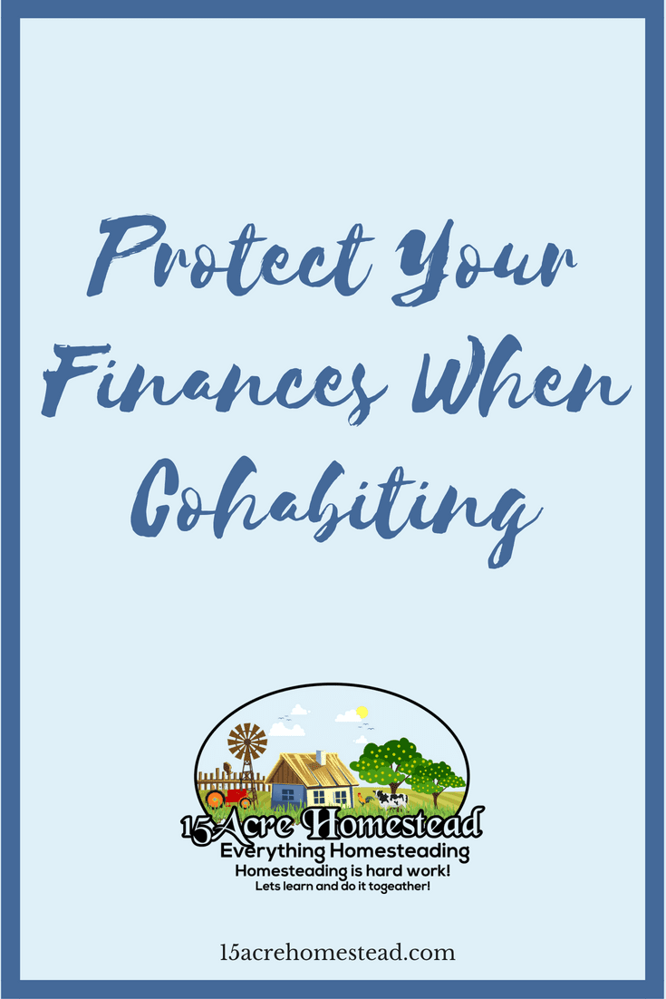 It is important when you share your life and a home with someone else to protect your finances. Here is how to do so.