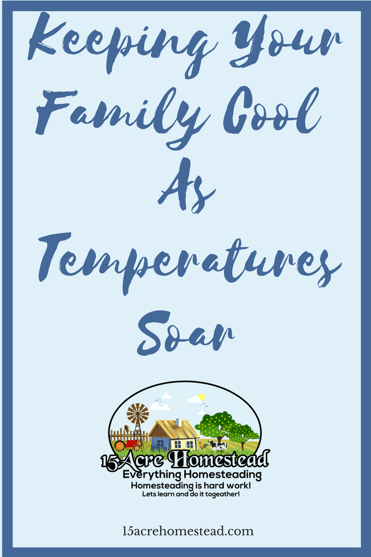 It is so important in the summer to be keeping your family cool. Here are some ways you can do so.