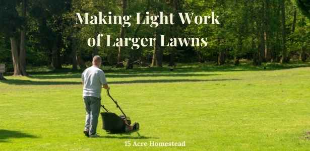 feature for larger lawns